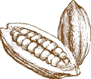 cacao colombiano artesanal